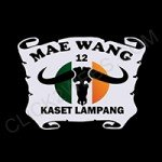 Logo_Maewang-150x150 ผลงานโปรไฟล์บริษัท Port Services Logo Maewang 150x150